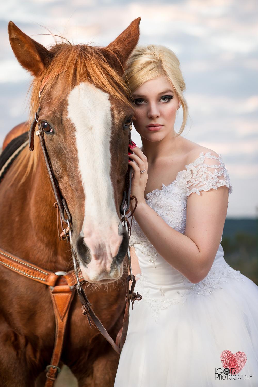 Kate-Colby-Horse-19.jpg