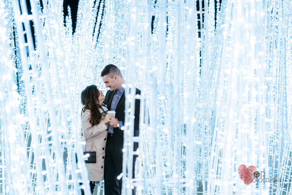 Ice proposal photos