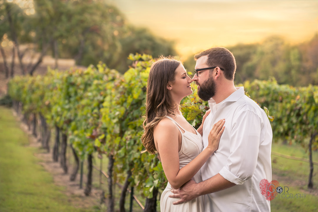 Reasons to Hire a Photographer to Capture Your Marriage Proposal