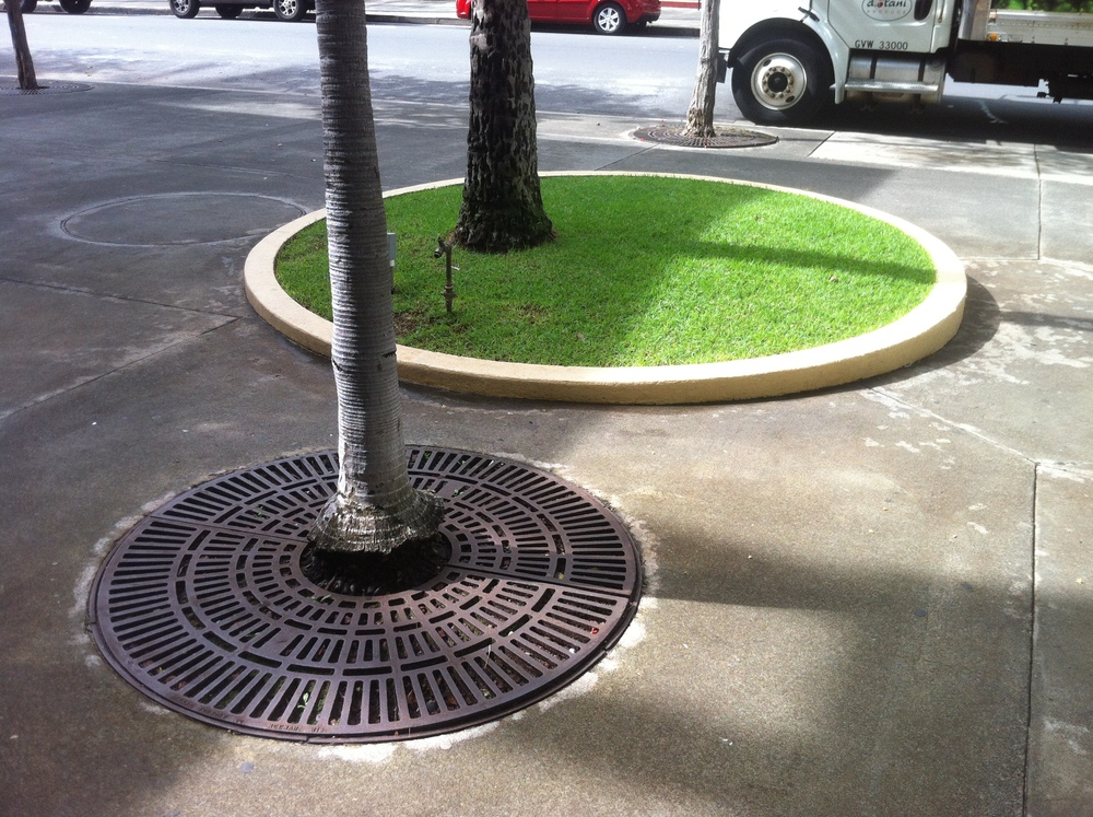 trees and the urban hardscape - typology of tree grates