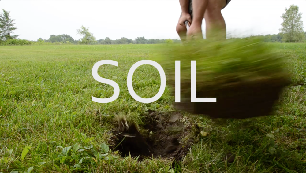 SOIL BLUR - DIVISION & BOUNDARY.png