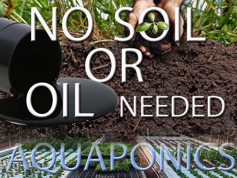 No Soil or Oil erase aqua hands.jpg