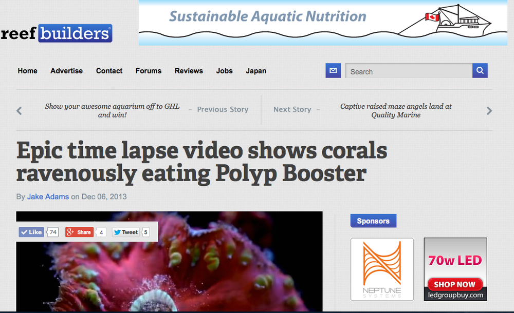 COMMERCIAL I DIRECTED FOR POLYP LABS NEW PRODUCT POLYP BOOSTER - READ FULL ARTICLE