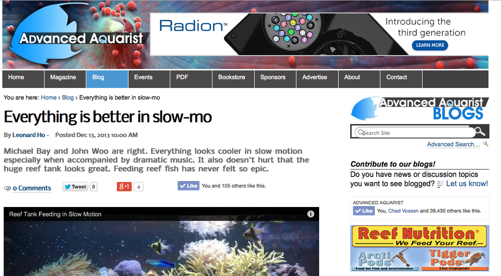 Another Article Featuring Video I Directed For Polyp Labs.