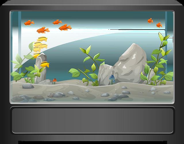 aquarium-576059_640.png