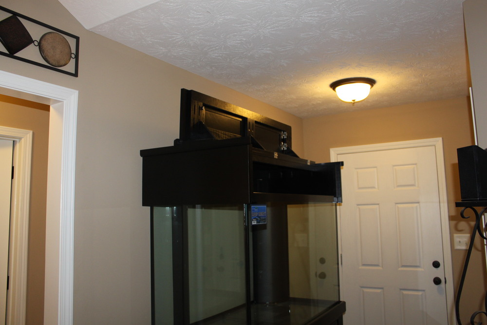 I originally had no idea that the canopy lifted up from the front. Bonus!