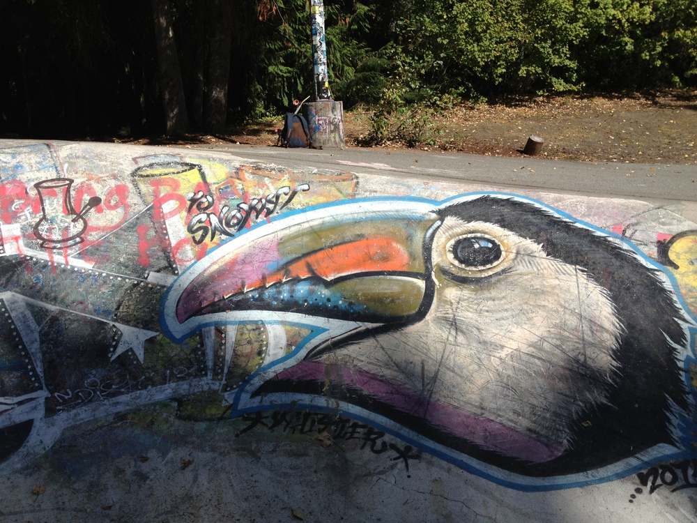 Toucan. Whistler skate bowl september 9, 2014