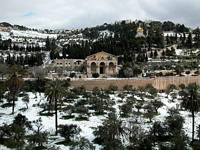 Snow blankets Gethsemane
