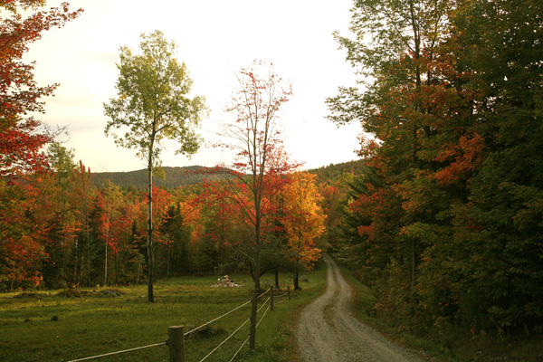Country Road, Vermont...