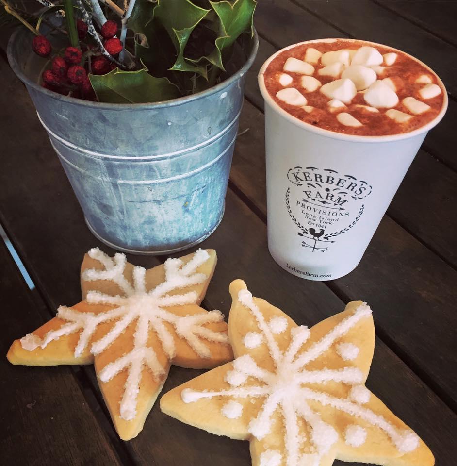 hotcocoacookies.jpg