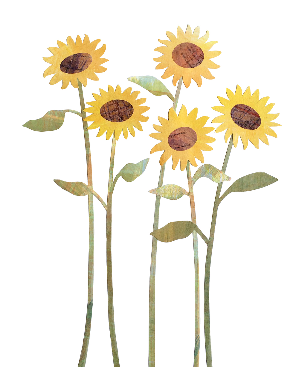 WSsunflowers2.jpg