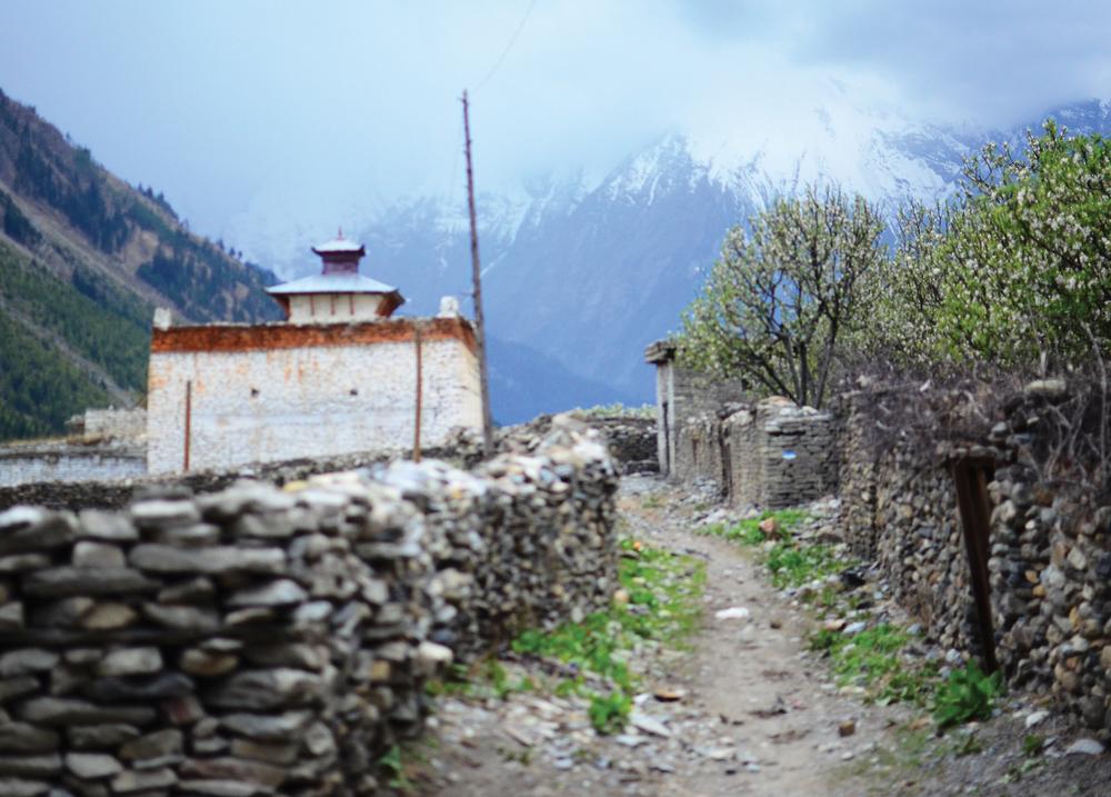 NepalPostcard6.jpg