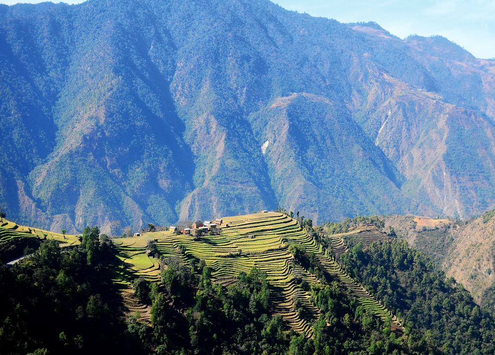 NepalPostcard12.jpg
