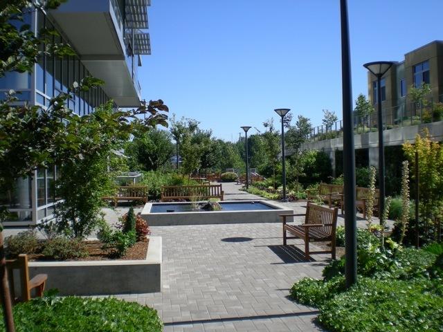 meriwether courtyard 4.jpg