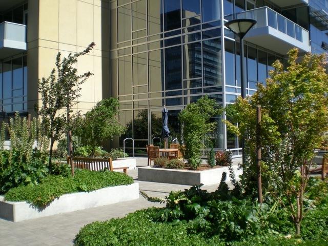 meriwether courtyard 5.jpg