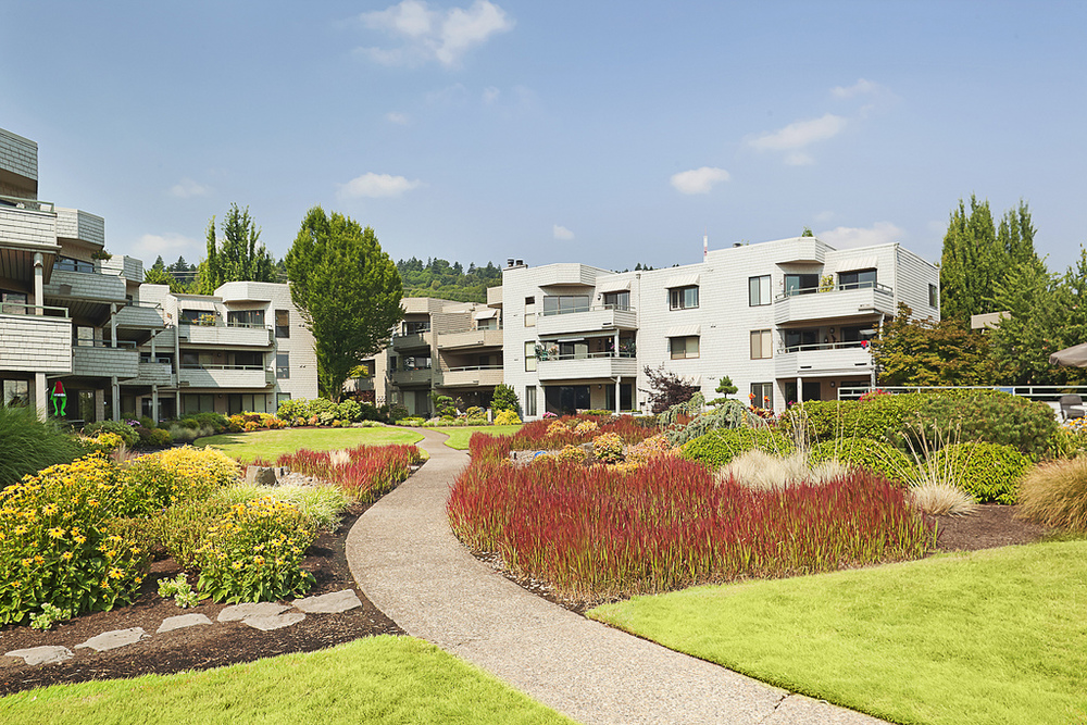 Click here for a virtual tour of Willamette Shores outdoor commons.