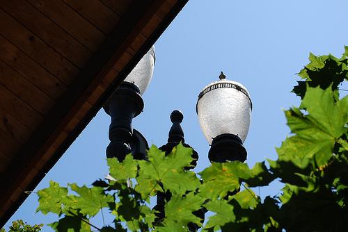 McCormick Pier Street Light.jpg
