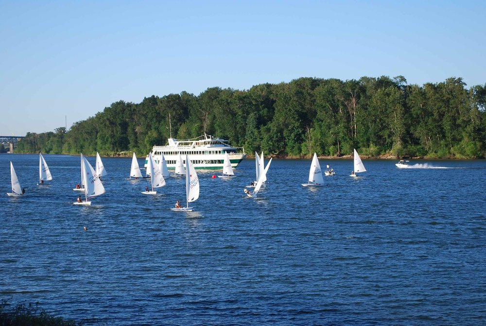 Portland Spirit and Sailboats from Willamette Sailing Club from the riverbank in Johns Landing