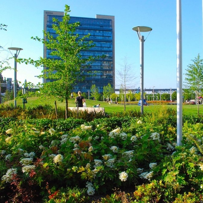 ELIZABETH CARUTHERS PARK - The Urban Digest