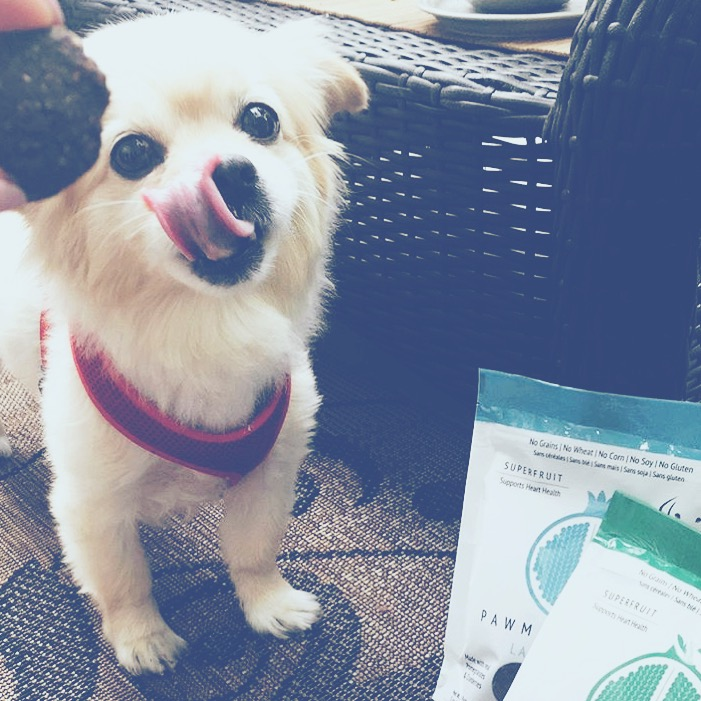 "@enigm4 ""Thank you @pawmegranate! Your natural dog treats, duck meatballs and lamb strips, have made this picky pup's day."""