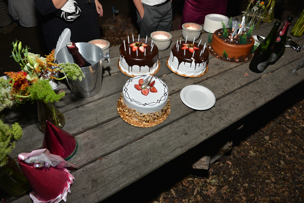 Oldehoeft_Trow_Wedding_535.jpg