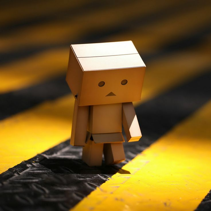 Danbo at work.jpg