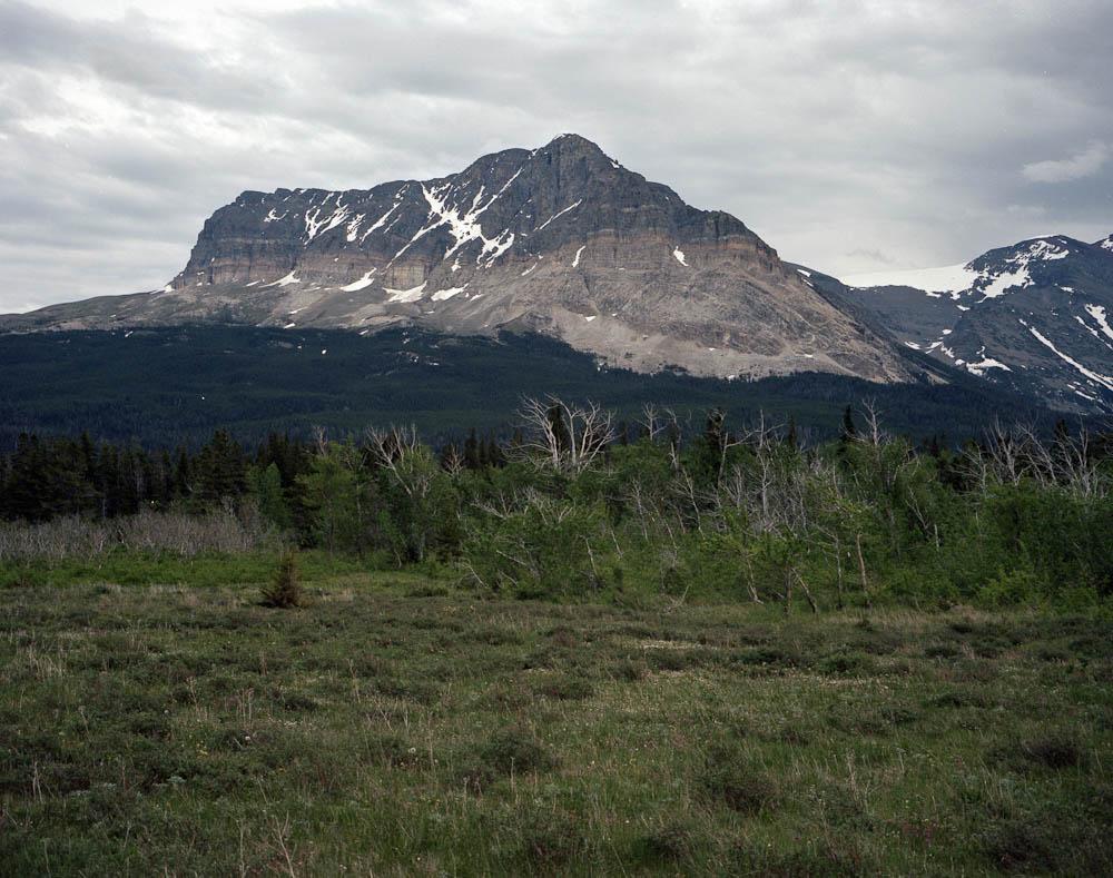moose place.jpg