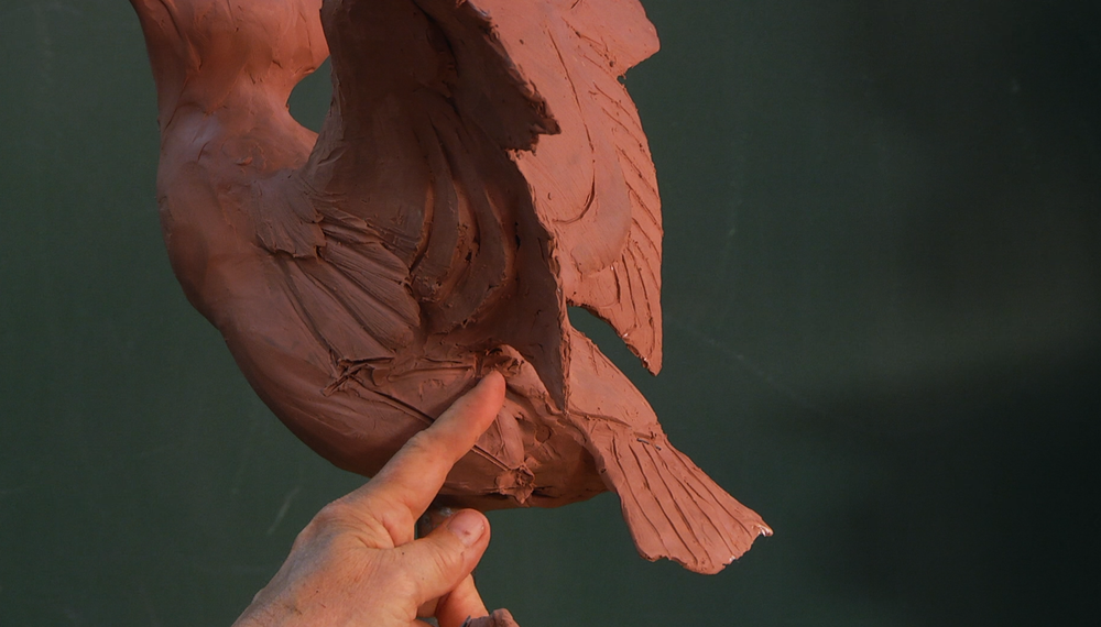 SANDY SCOTT Bird and Wildlife Sculpting in Clay - Online Art Workshop Course for Sculptors in Clay
