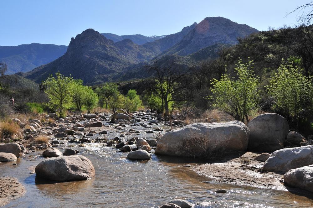 creek_15165485240_o.jpg