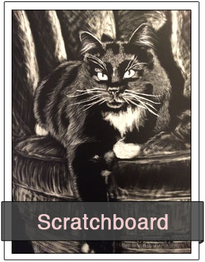 category_scratchboard.jpg