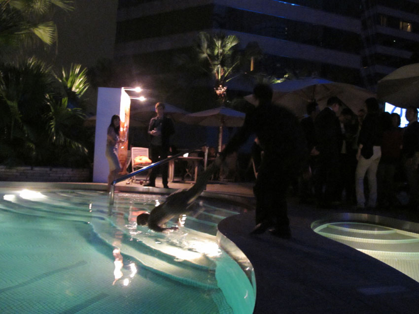 self doll   being arrested by security and kept at the Art Hong Kong VIP party at the Grand Hyatt Hotel pool, Hong Kong, 2011