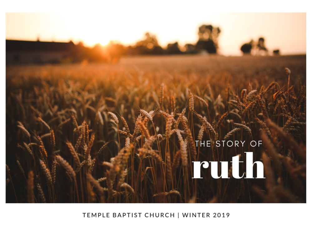 TBC-the-story-of-ruth.png