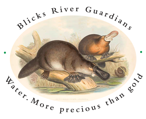 Blicks River Guardians