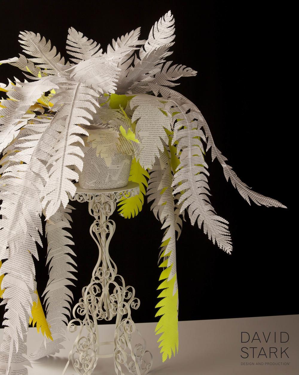 davidstark paper fern.jpg