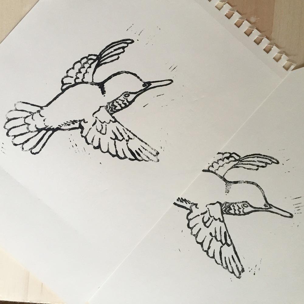 Corrie_Hogg_hummingbird.JPG