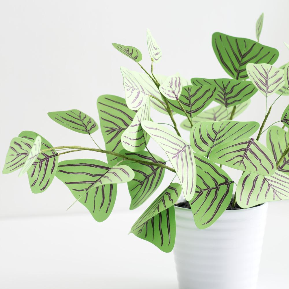 Corrie_Hogg_paper_plant_swallowtail_2.jpg