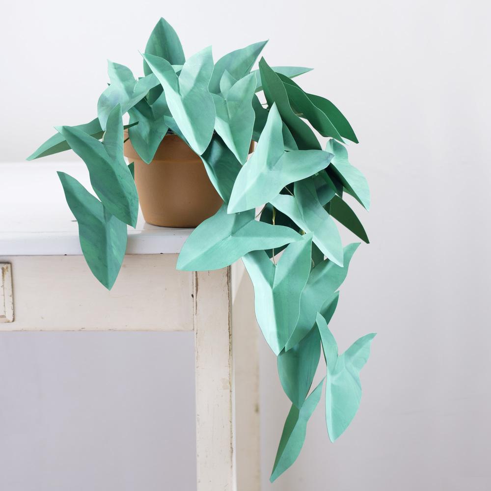 corrie_hogg_paper_plant_arrowplant.jpg