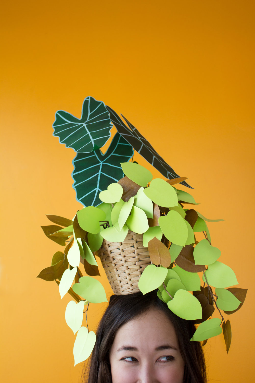 plant_hat_1.jpg