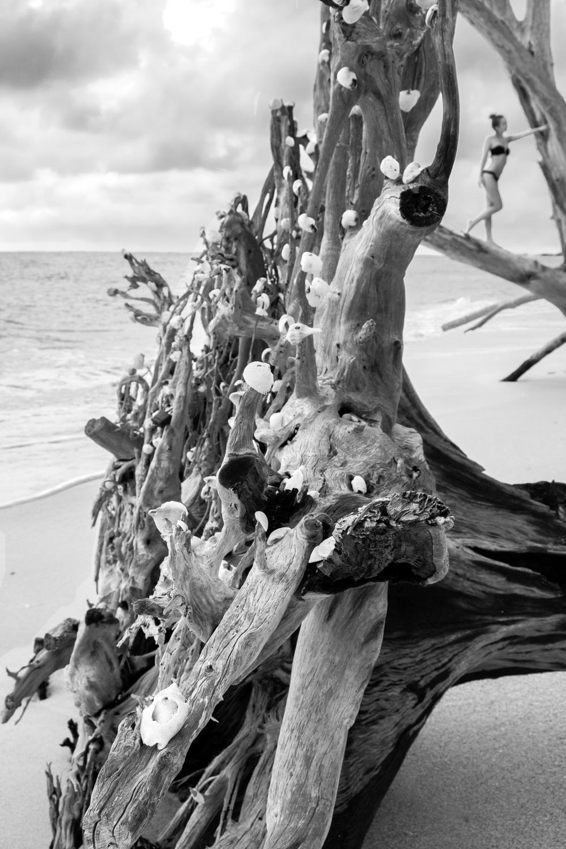 model on beach.jpg