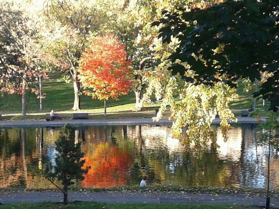 Mi oficina algunas tardes de otoño es el Parque La Fontaine