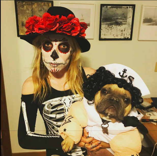 Day of the Dead and Bull Dogs