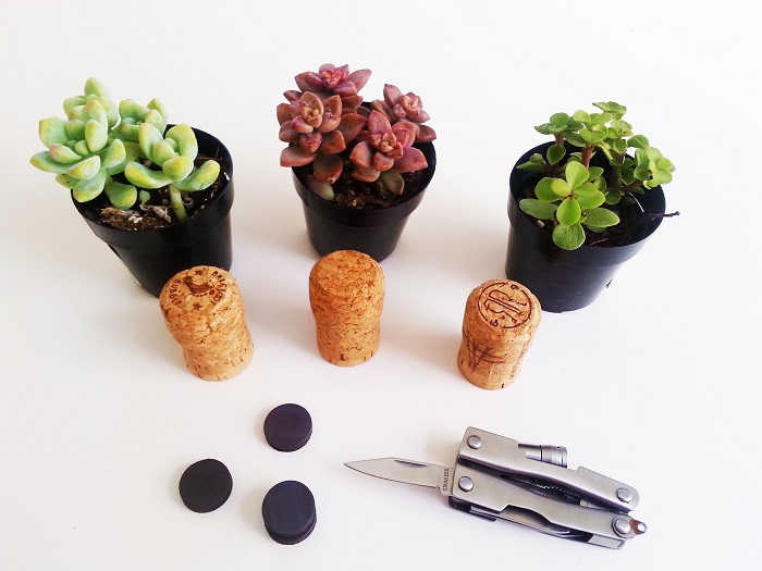 2_cork_planter_diy_tutorial_craft.jpg