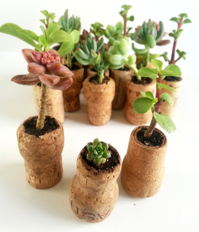 8_cork_planter_craft_diy_tutorial.jpg