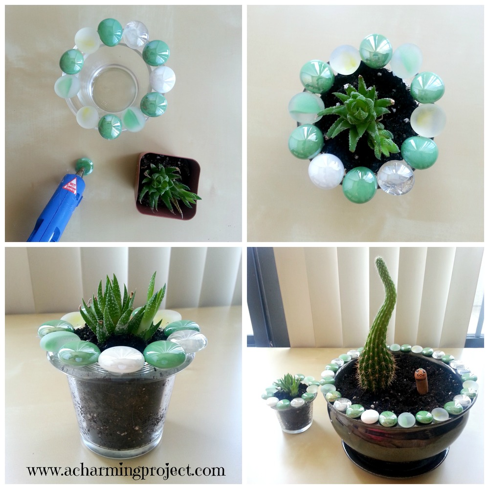 A mid -century modern succulent makeover via www.acharmingproject.com