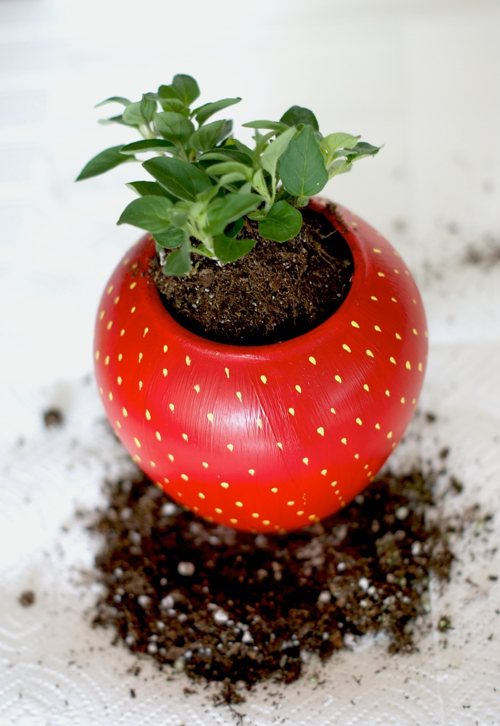 DIY Painted Strawberry Herb Planter tutorial