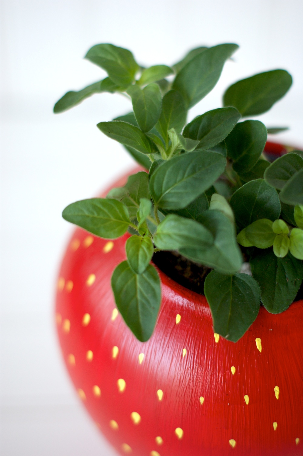 DIY Painted Strawberry Herb Planter tutorial 2