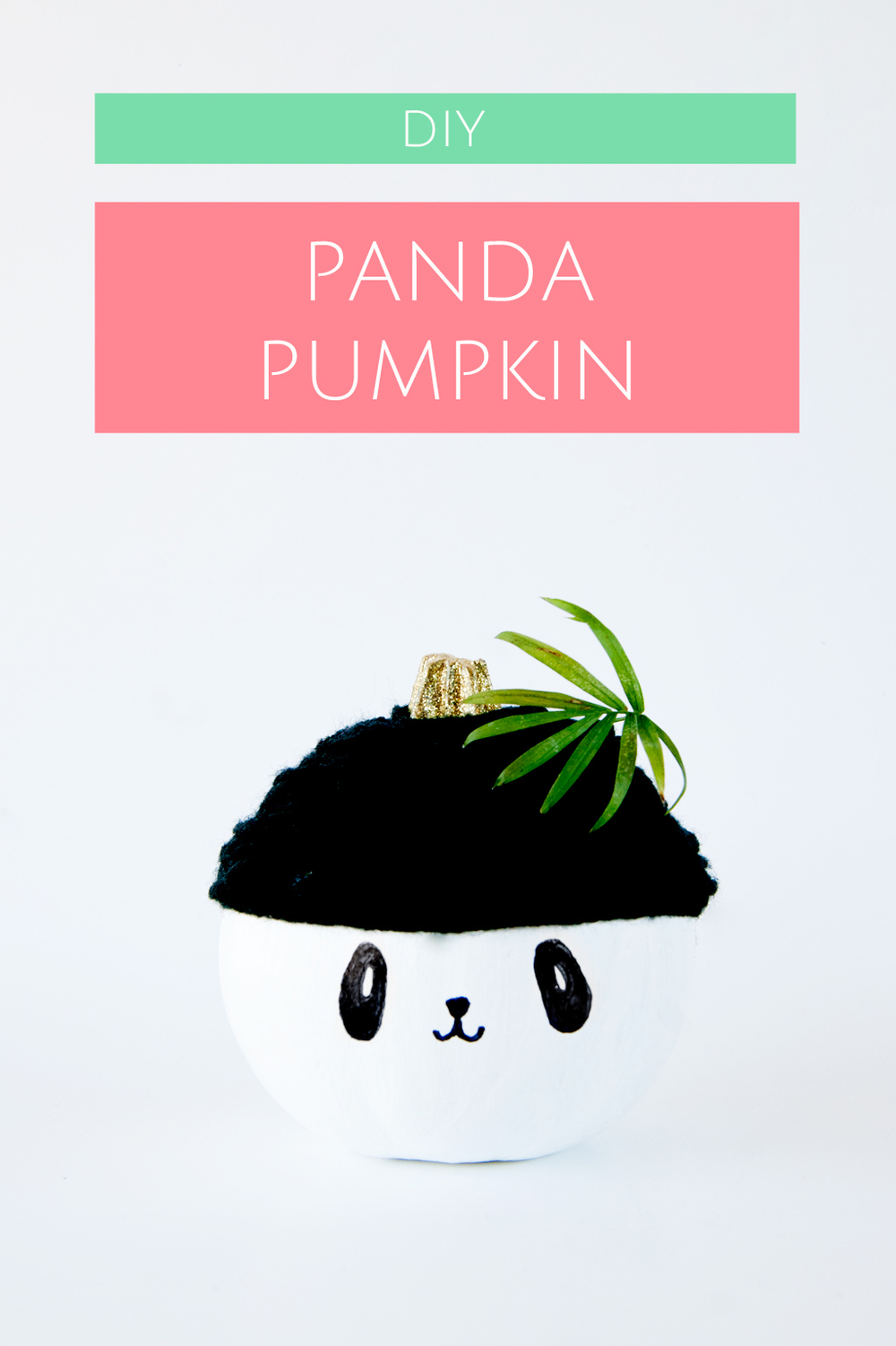 Dress up your pumpkin as a cozy panda for Halloween