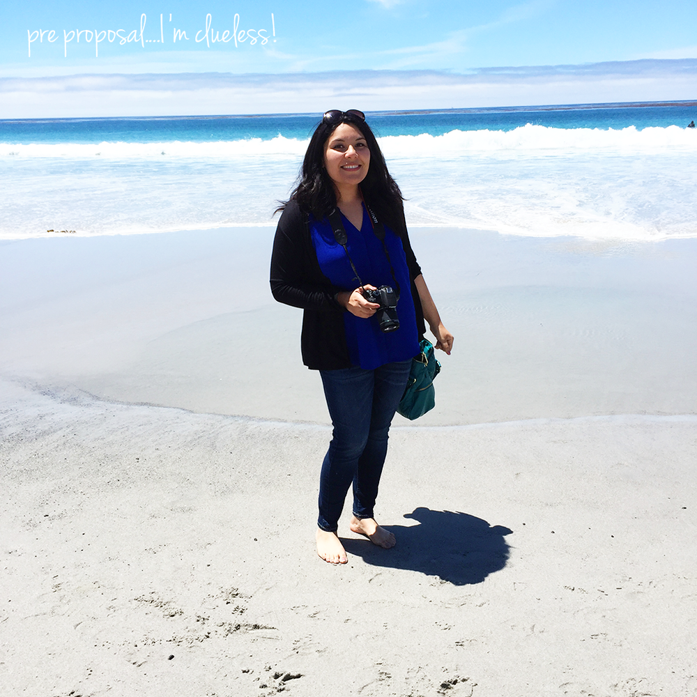 carmel by the sea - pre proposal