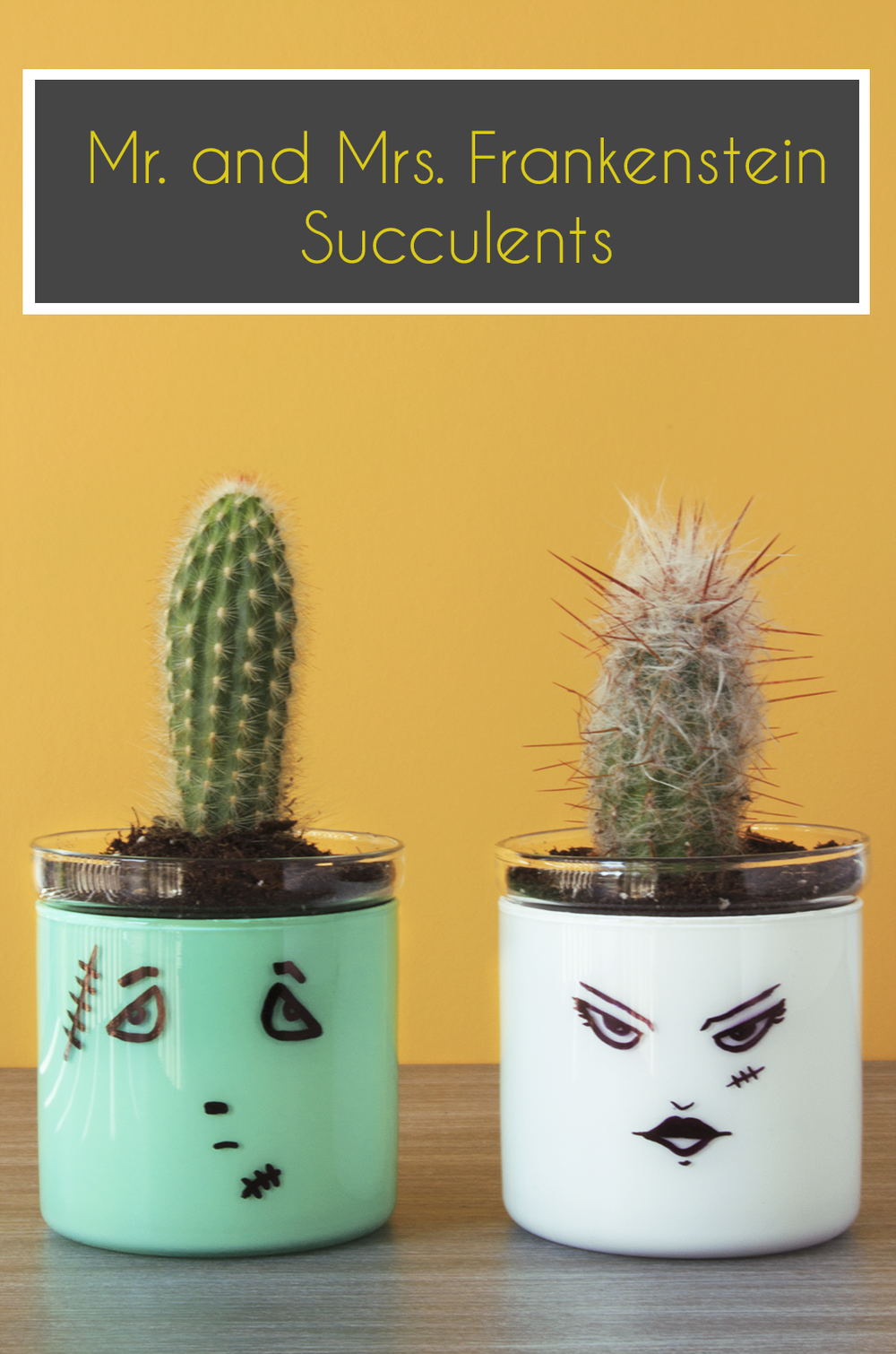 Mr. and Mrs. Frankenstein Succulent Plant Holders