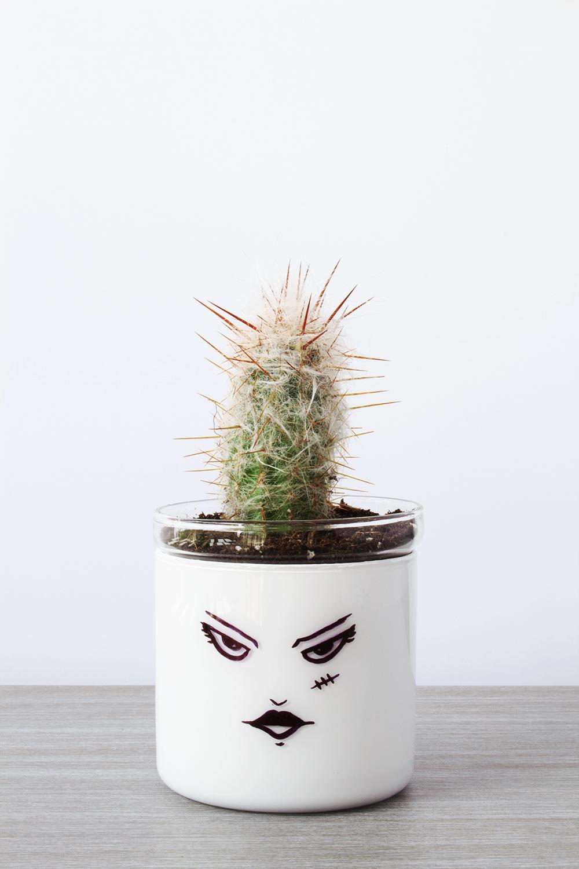 Sassy Mrs. Frankenstein Succulent DIY